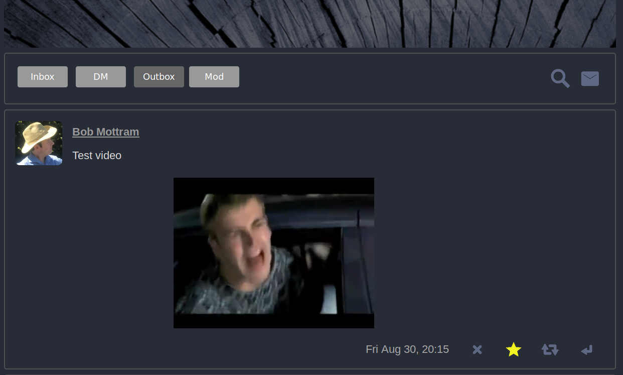 screenshot showing embedded video clip
